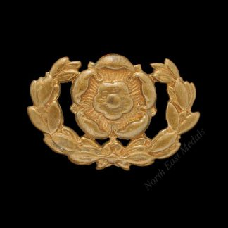Hampshire Regiment Collar Badge