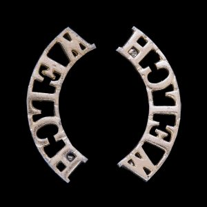 Pair of Staybrite Welch Regiment Shoulder Title Badges