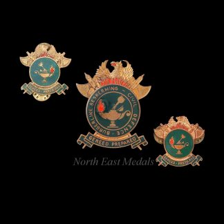 South African Civil Defence Cap Badge and Collars