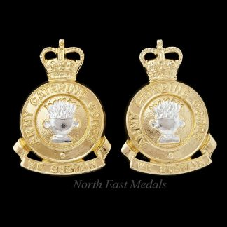 Pair of Post 1973 Army Catering Corps Staybrite Collar Badges