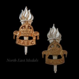 Two Royal Army Educational Corps RAEC Collar Badges