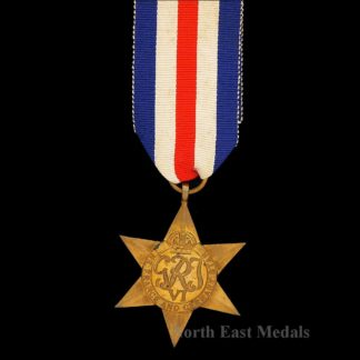 WW2 France & Germany Star Campaign Medal