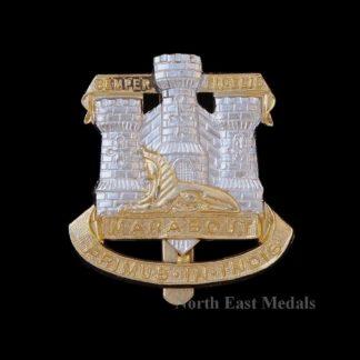 The Devonshire and Dorsetshire Regiment Staybrite Cap Badge