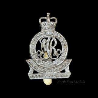 Surrey Yeomanry (Queen Mary's Regiment) Cap Badge