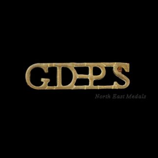 South Africa Prison Service Shoulder Title Badge 'GDPS'