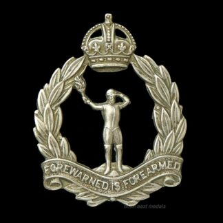 Royal Observer Corps Cap Badge
