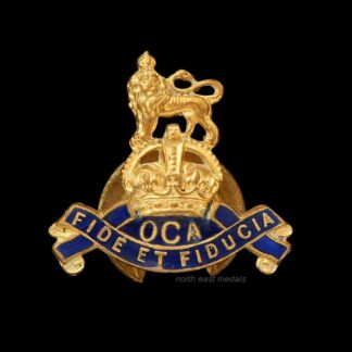 Royal Army Pay Corps Old Comrades Association Lapel Badge