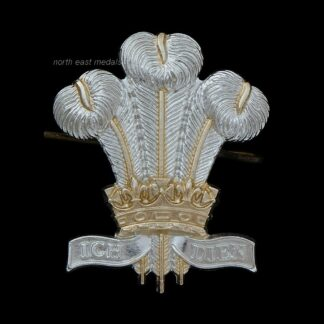 Royal Regiment of Wales Staybrite Cap Badge