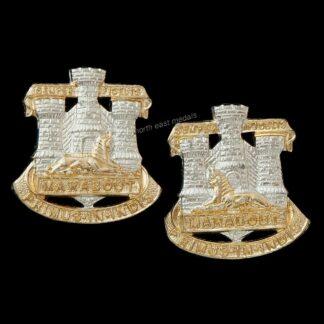 The Devon and Dorset Regiment Pair of Staybrite Collar Badges